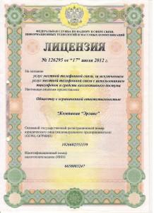 Лицензия 126295-1